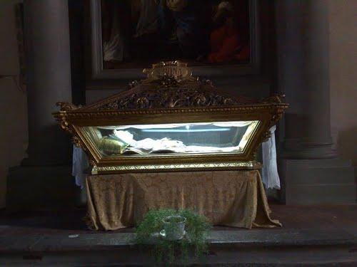 Used For - St. Bona of Pisa